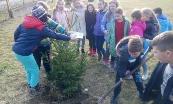 Cerovac poklonio jelku ekološkoj sekciji u Patkovači