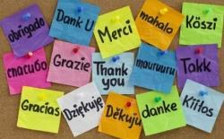 Najčešće zablude u učenju stranog jezika